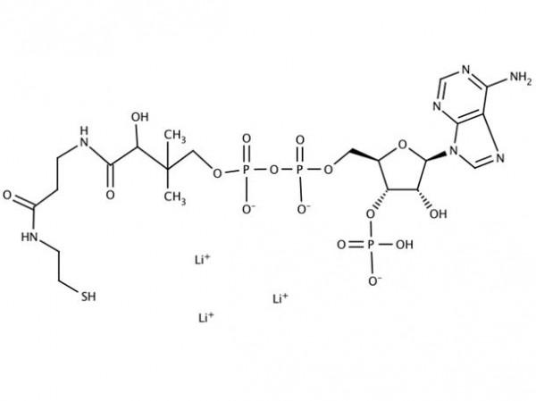 Coenzyme A trilithium salt