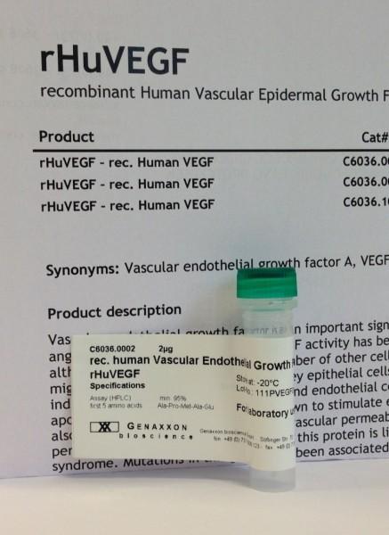 rec. human vascular epidermal growth factor - VEGF