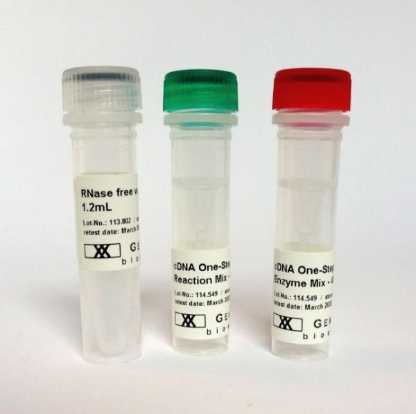 OneStep RT-PCR Kit