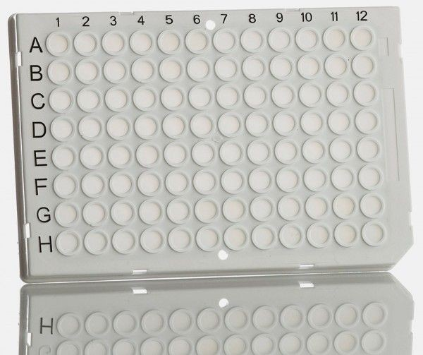 96-well qPCR plate for LC480 from Roche