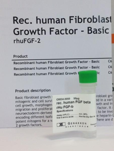 FGF-beta - Fibroblast Growth Factor 2