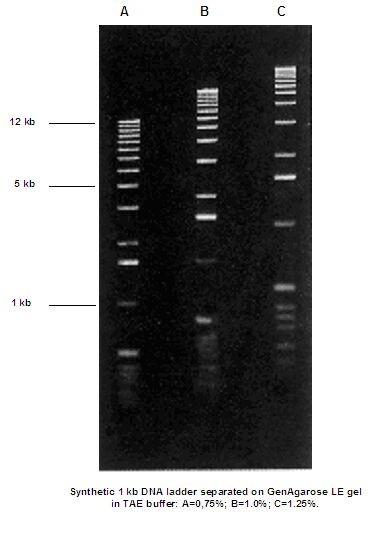 Trennschärfe der Genaxxon Standardagarose