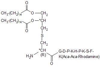 FSL-1-Rhodamin TLR2/TLR6 Peptid