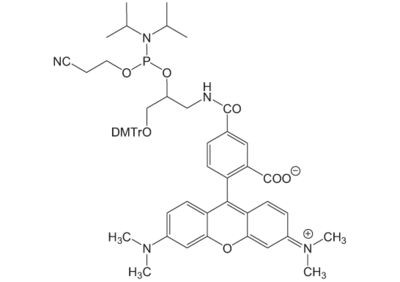 6-TAMRA-DMTr-phosphoramidit