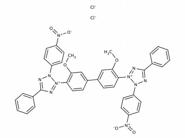 Nitroblue tetrazolium chloride