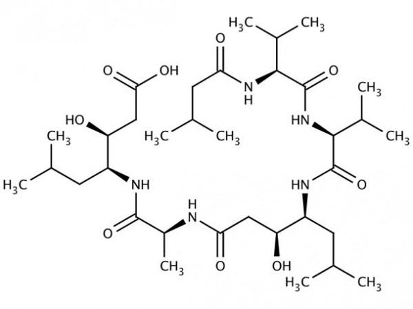 Pepstatin