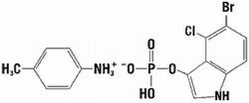 BCIP, molecular biology grade