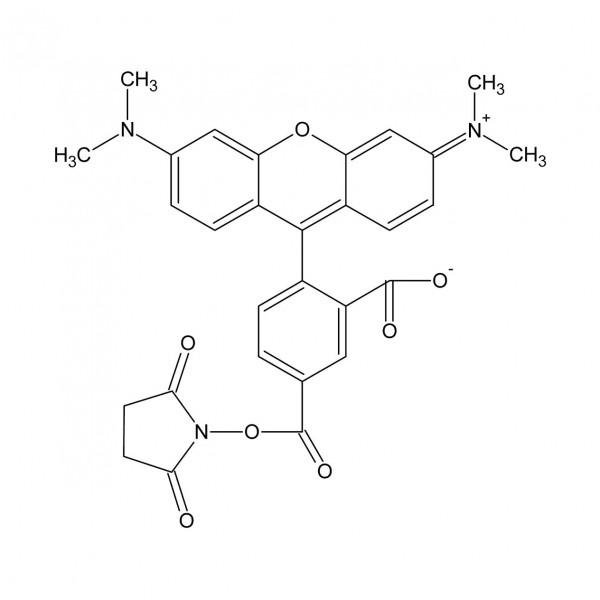 5-TAMRA-SE / 5-Carboxytetramethylrhodamine N-succinimidyl ester