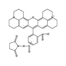 5(6) Carboxy-X-rhodaminsuccinimidylester / 5(6) ROX SE