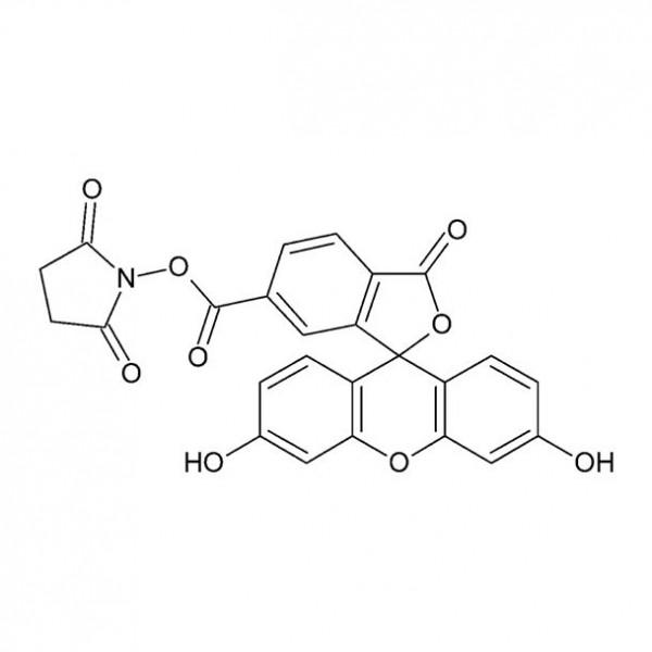 6-FAM / 6-FAM N-succinimidyl ester