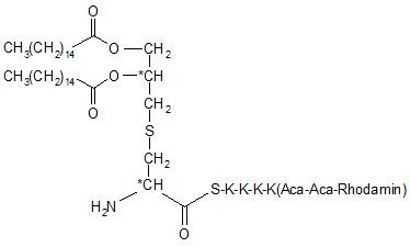 Pam2Cys-SKKKK(Rhodamine-Aca-Aca)-NH2