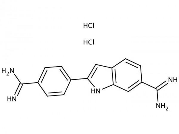 DAPI - 4',6-Diamidino-2-phenylindole dihydrochloride