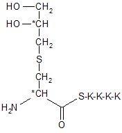 Lipopeptid Dhc-SKKKK