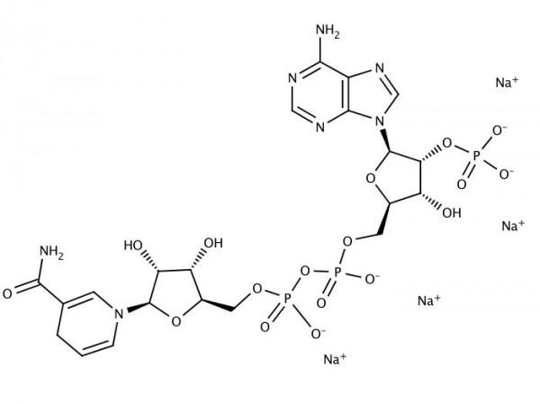 NADPH (tetrasodium salt) min. 95%